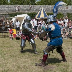 chevaliers pourpres